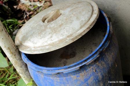 Biological fertilizer, effective microorganisms