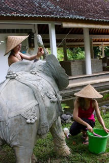taking care of elephants at Jiwa Damai