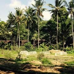 Permaculture courses Bali