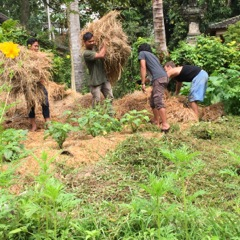 Permaculture Bali at Jiwa Damai