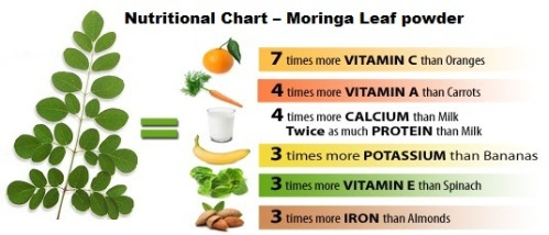 nutritional parts of moringa